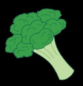 broccoli5